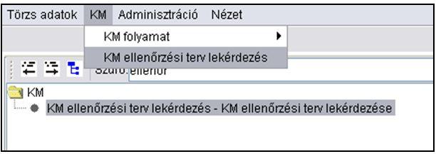 KM ellenőrzési tevékenységgel kapcsolatos szakrendszeri tevékenységek